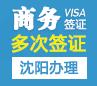 美国商务签证[沈阳办理](需面试)+面签培训